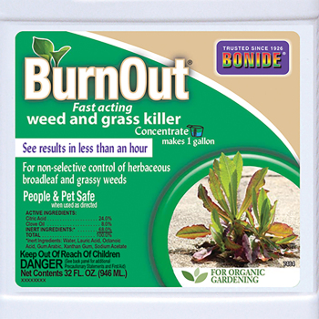 Bonide Burnout Concentrate
