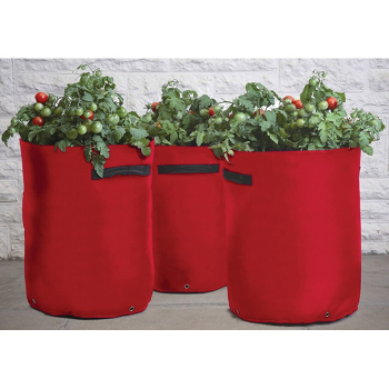 Tomato Patio Planter Bags