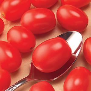 Hybrid Cherry Tomato Seeds