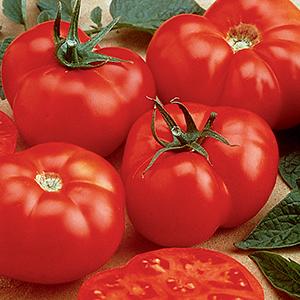 Large Tomato Seeds