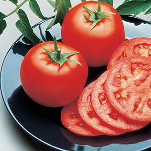 Medium-Small Tomato Seeds