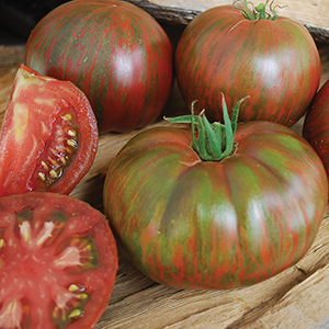 Wild Boar Series Tomato Seeds