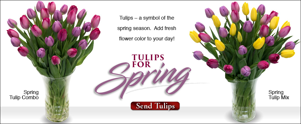 Fresh Cut Flowers & Spring Flowering Bulbs: Tulips.com - photo #8