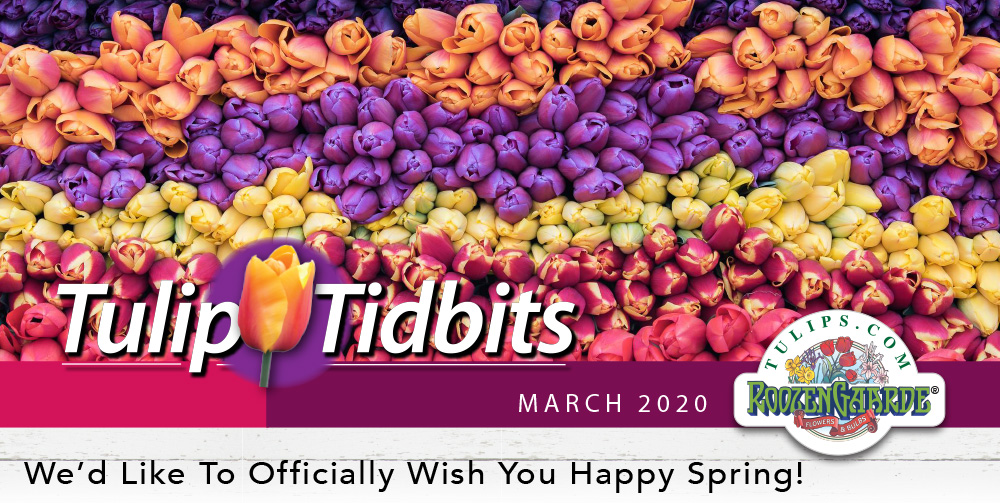 Tulips Tidbits March 2020 - We'd Like To Officially Wish You Happy Spring!