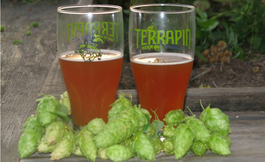 Terrapin Beer Company - Top 25 College Town Breweries