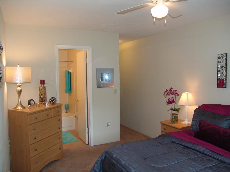 Pine Rush Villas $300   $519