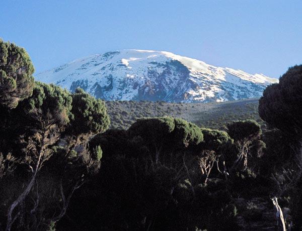 Scaling Kilimanjaro
