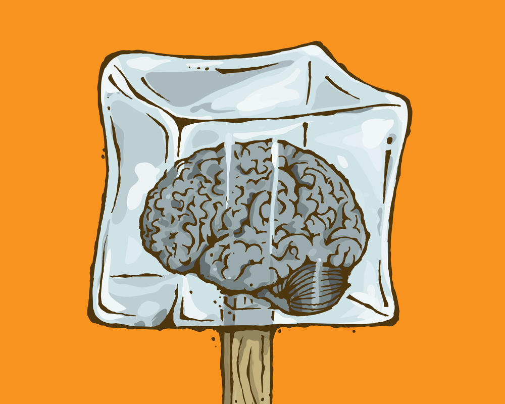 Brain Freeze—VIRGINIA Magazine
