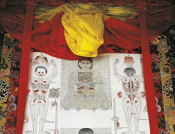 Tibetan Medicine Under the Microscope