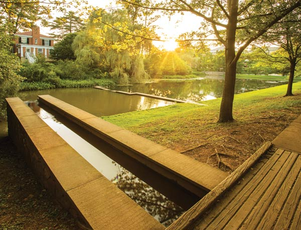 The Dell: It's beautiful. It's serene. And it makes UVA basketball possible.