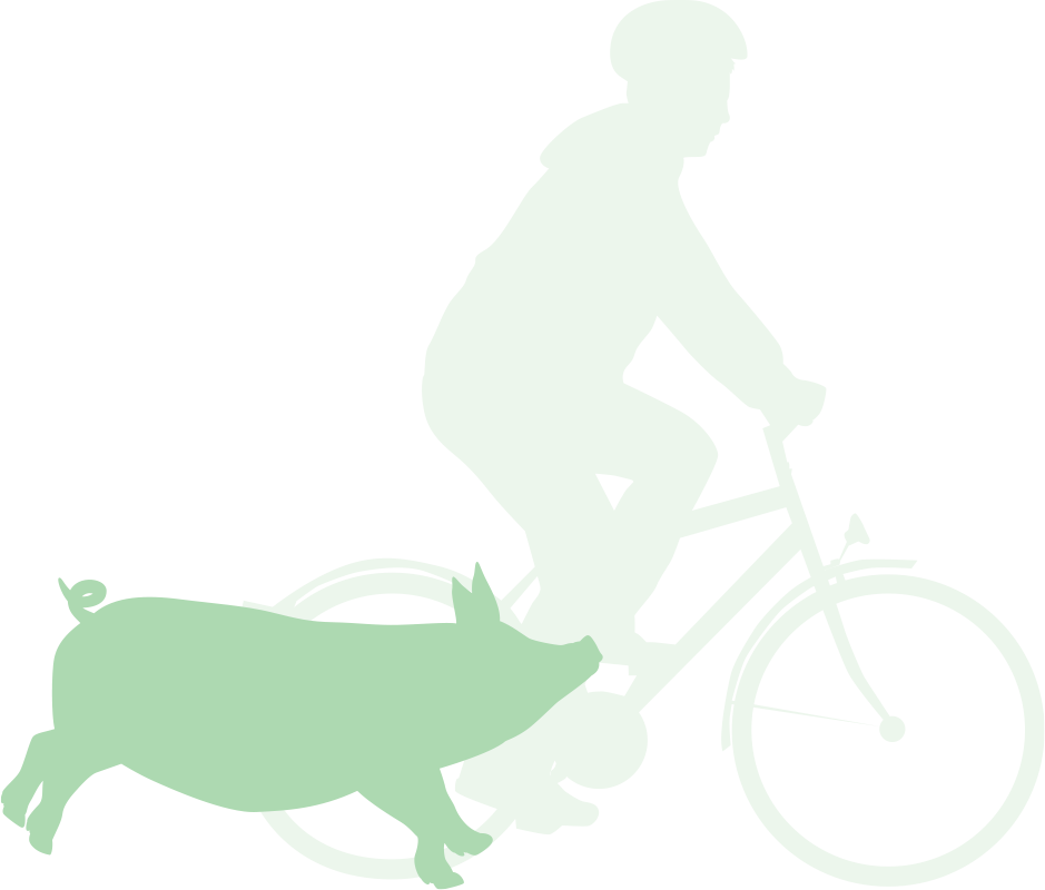 Biker, with pig for comparison