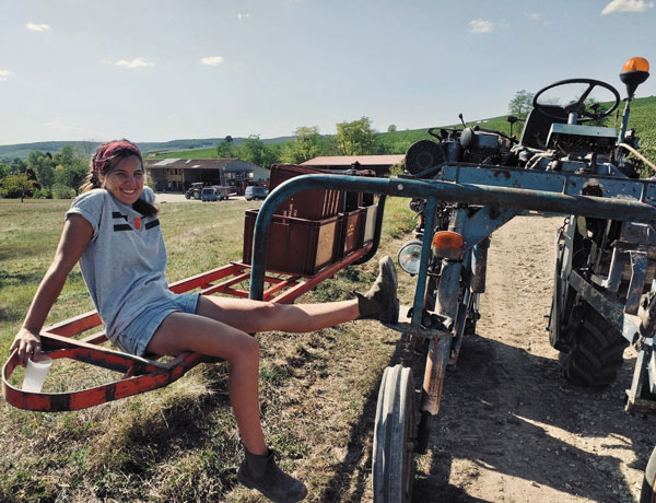 Alumna learns craft of Champagne-making during French apprenticeship