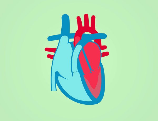 Study seeks better identification for a heart disease