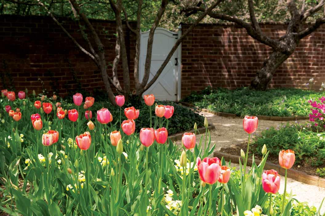 Pavilion Garden in Spring