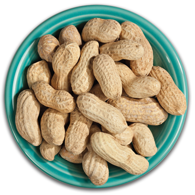 16 oz. Bag Roasted-in-Shell (Unsalted) Peanuts