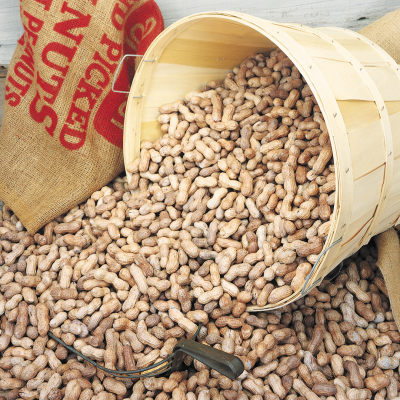 5 lb. Peck Basket Salted-in-Shell Peanuts