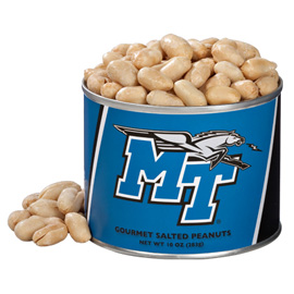 10 oz. Middle Tennessee Salted Gourmet Peanuts