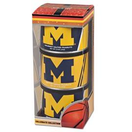 University of Michigan Basketball Triplet (2 Salt, 1 BT)