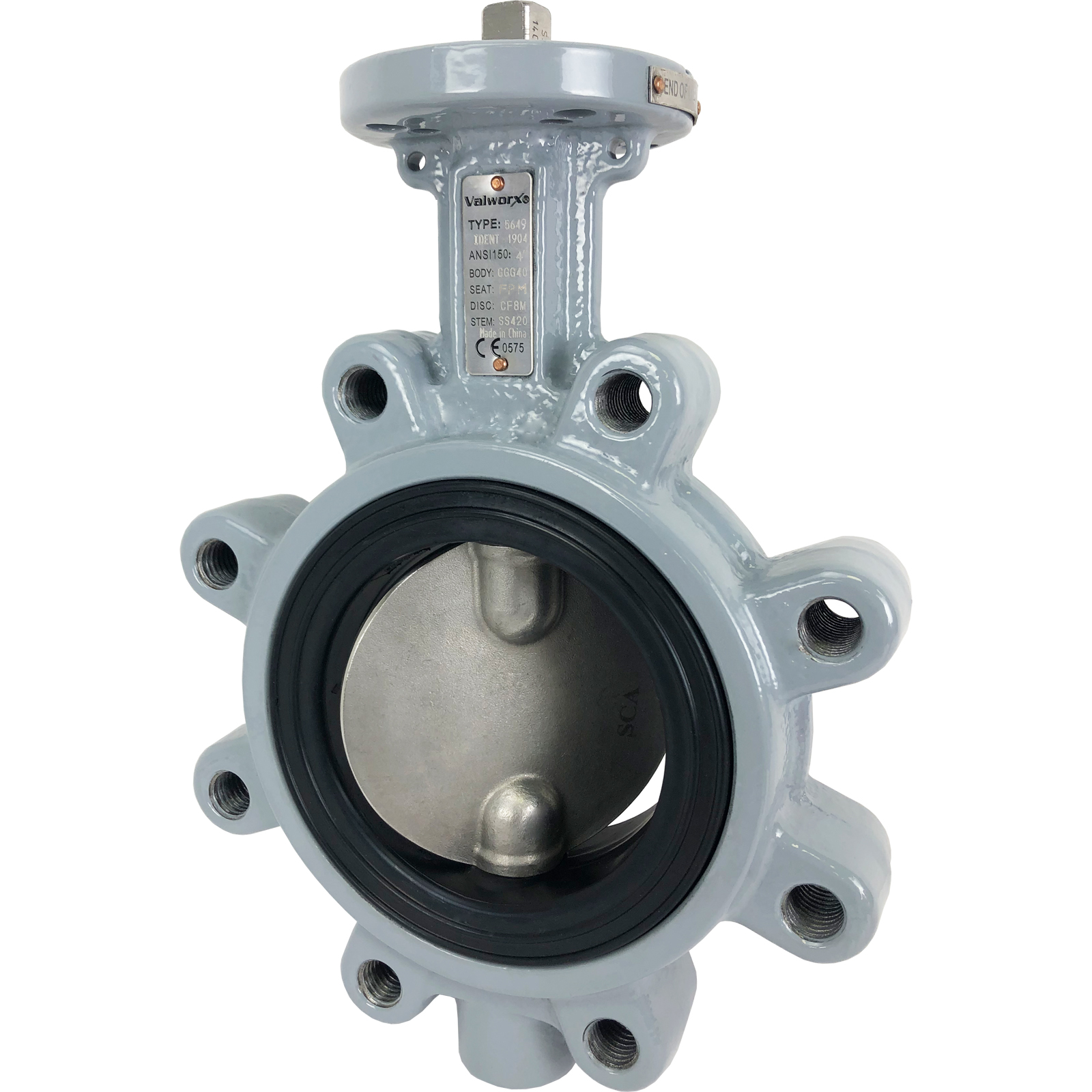 "4"" Direct Mount Butterfly Valve Lug FPM"