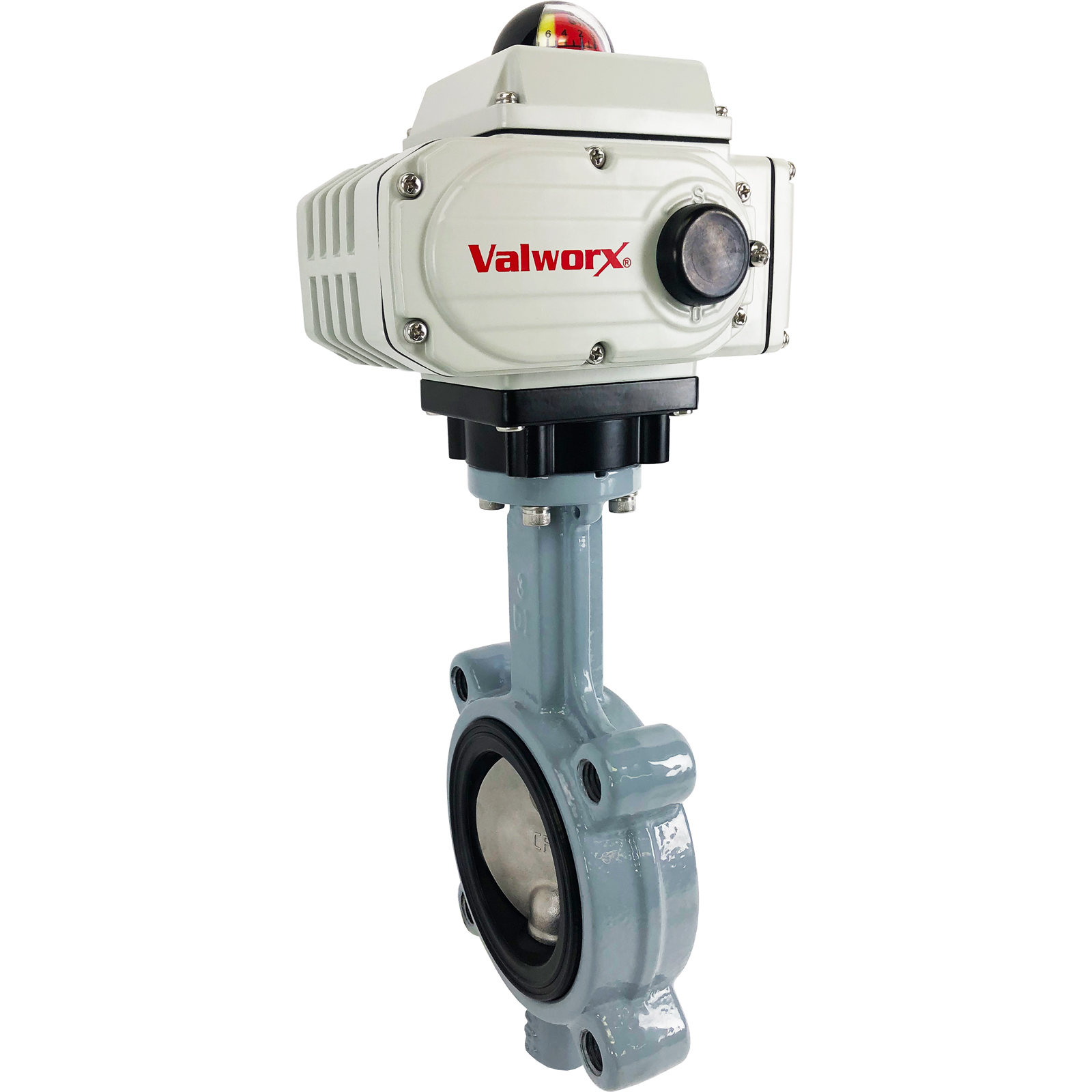 """3"""" Electric Actuated Butterfly Valve, Lug, FPM, 24 VDC"""