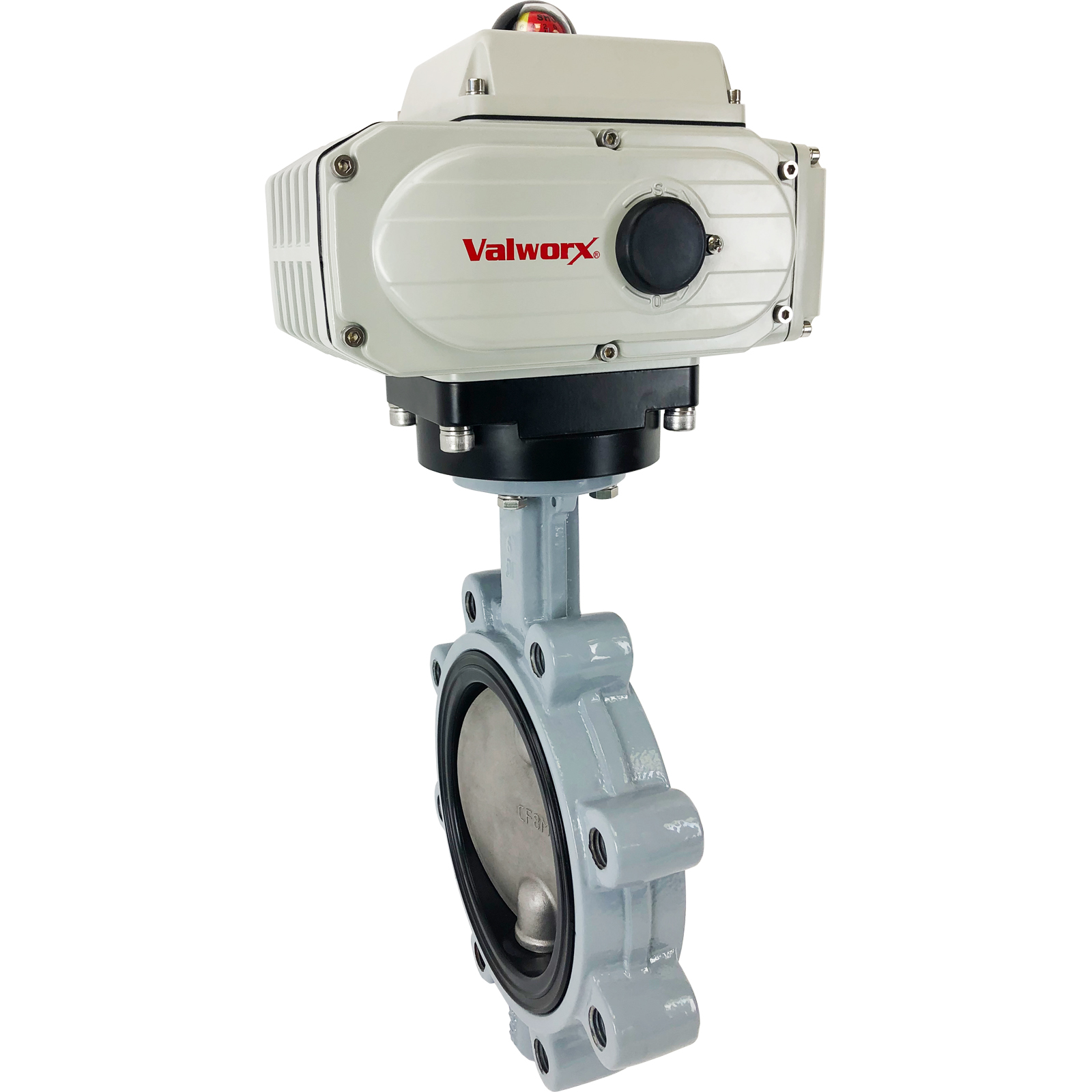 """6"""" Electric Actuated Butterfly Valve, Lug, EPDM, 110VAC"""