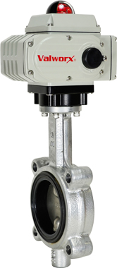 "3"" Electric Actuated Butterfly Valve, Lug, FPM, 110 VAC"