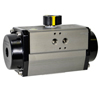 5300 Series Pneumatic Actuators - Double Acting