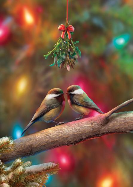 Box Christmas Kiss Christmas Cards
