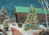 Box Country Lights Christmas Cards