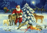 Box Forest Noel<br>Christmas Cards