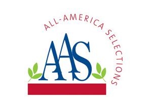 AAS Corporate Logo
