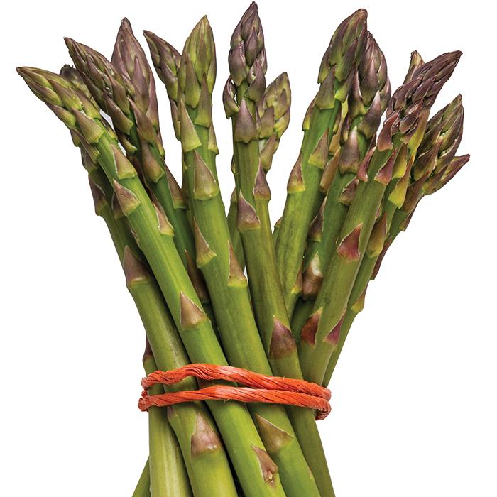 Walker Deluxe Asparagus
