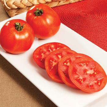 Red Pride Hybrid Tomato