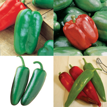 Sweet And Hot Pepper Collection