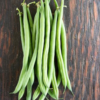 Greenfield Bean