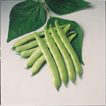 Furano Romano Bean - 200 seeds