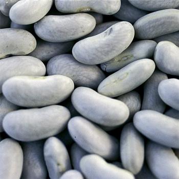 Cannellini Dry Bean - 2 ounces