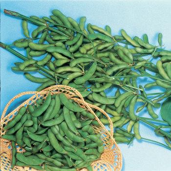 Besweet Soybean