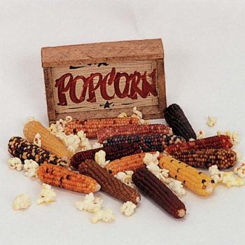 Mini Rainbow Ornamental Popcorn