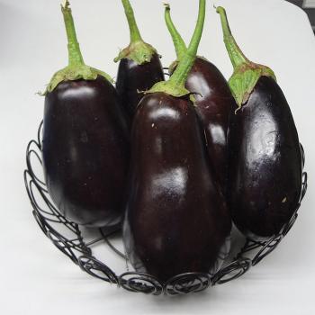 Black Bell Hybrid Eggplant