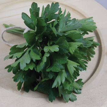 Dark Green Italian Parsley