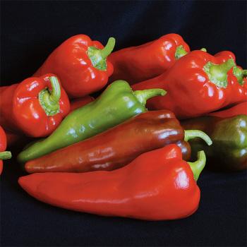 Carmen Hybrid Pepper