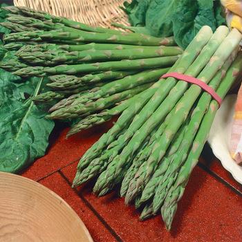 Millennium Hybrid Asparagus