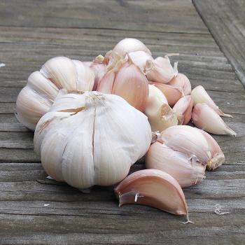Vietnamese Red Garlic