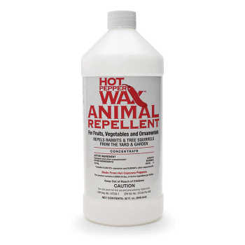 Hot Pepper Wax Animal Repellent - 32 Oz. Concentrate