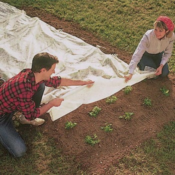 Harvest Guard Floating Row Cover - 5' X 25'