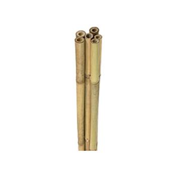 Bamboo Poles - 6 Feet