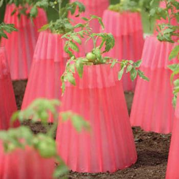 Kozy Coat Plant Protector
