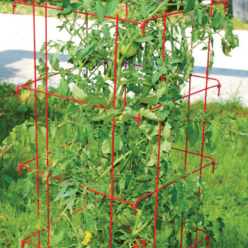 Jumbo Tomato Cages - Red