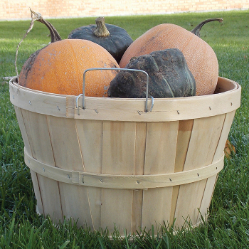 Wooden Basket 1/2 Bushel